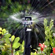 Đầu tưới cây phun mưa 360 roto spray 1