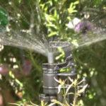 Đầu tưới cây phun mưa mini rotor rain 1