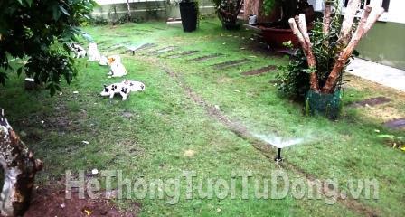 Tưới sân cỏ cho khu vườn