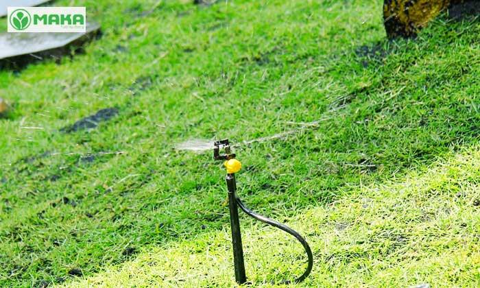 Ứng dụng đầu tưới phun mưa Fan 360 Vari Rotor ren 21 tưới sân vườn