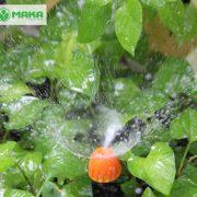 dau-tuoi-phun-mua-360-do-micro-mist-sprayer-on-spike-claber-91229-sp4_grande
